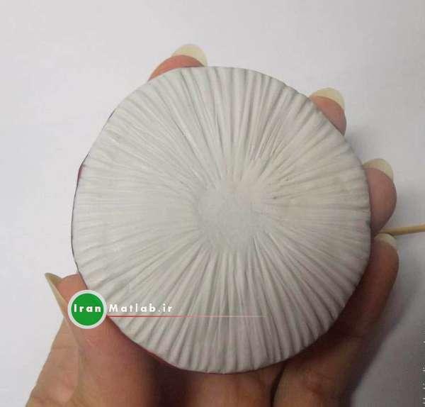 آموزش ساخت قارچ تزیینی قارچ زیبا عکس قارچ