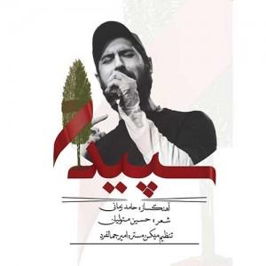 Hamed-Zamani-Sepidar.jpg