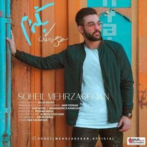 Soheil-Mehrzadegan-Begardam.jpg