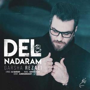 Garsha-Rezaei-Del-Nadaram.jpg