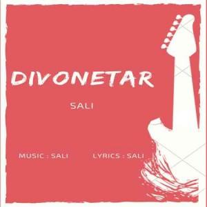 Sali-Divoonetar-Cover-Music-fa.com_.jpg